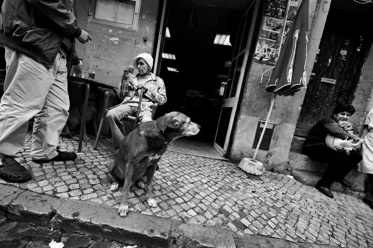 Adrian Andrunachi Photography