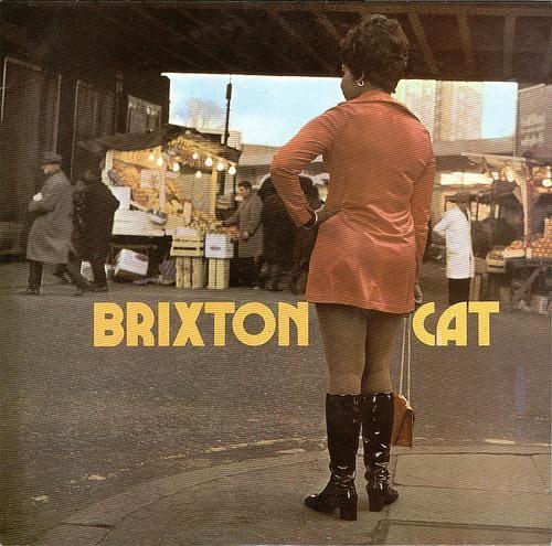Brixton Cat