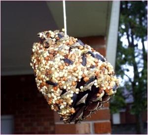 Comedero para pájaros hecho con una piña, manteca y semillas.