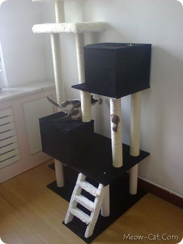 Free cat tree plans cats pinterest for How to make a cat tower