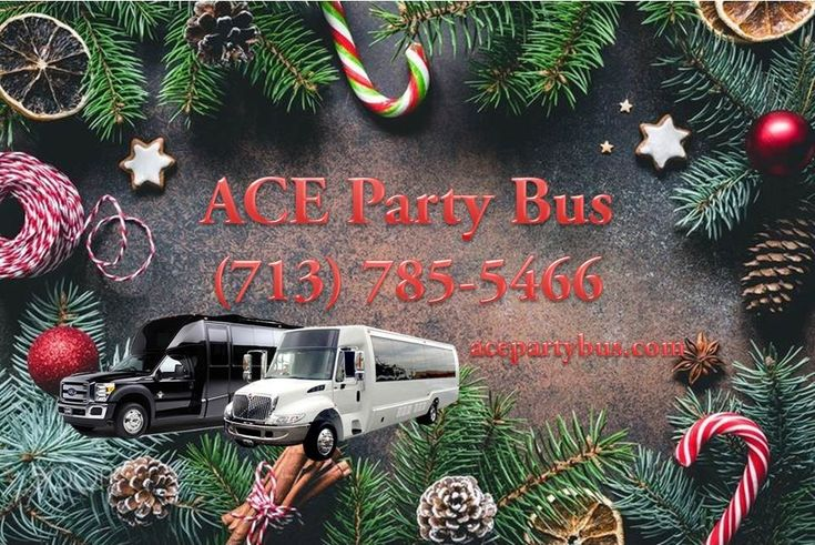 You've got any plans for New Year's Eve? For a fun time on December 31st, call or text Ace Limousine & Charter Bus Services at (713) 785-5466. We're offering Party Buses with the cheapest prices and special services! We Got Your Back.