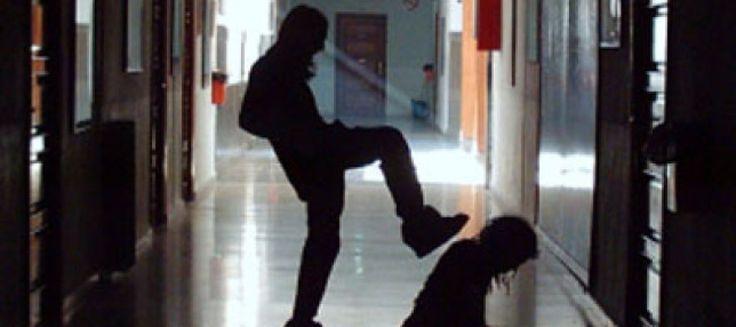 """Denuncian a la dirección de un colegio de Albacete por ocultar un caso de acoso escolar      La madre de un alumno del colegio concertado La Enseñanza de Albacete ha anunciado que ha interpuesto una querella criminal contra el equipo directivo del centro y la Inspección de Educación por """"ocultar"""" el caso de acoso escolar que…"""