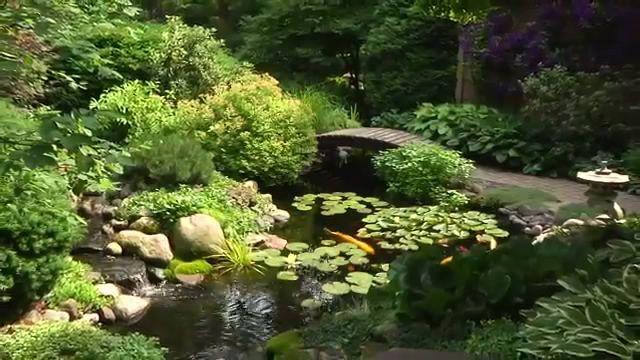Beautiful Backyard Ponds :  beautiful backyard ponds more gorgeous gardens backyard ponds backyard