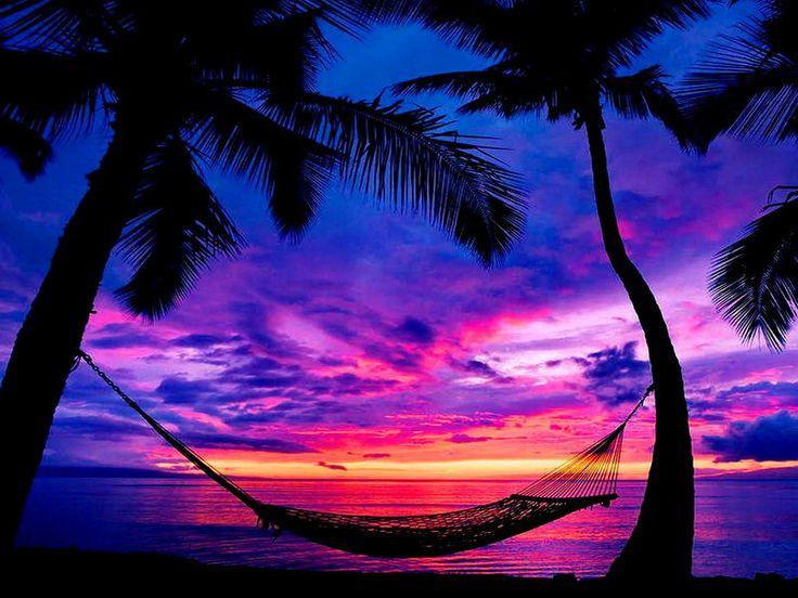 zonsondergang strand met palmbomen - Google zoeken