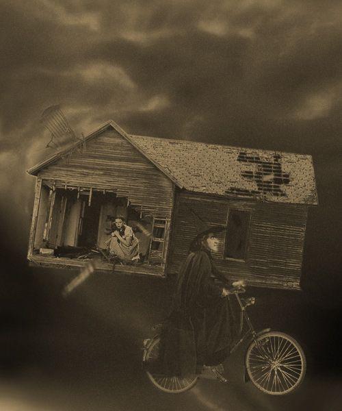 Best 25 Toto Wizard Of Oz Ideas On Pinterest Wizard Of Oz