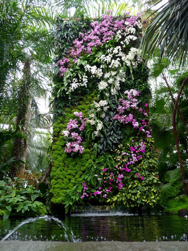 NY Botanical Gardens -- Patrick Blanc's Waterfall (Sickles on the Road)  // Great Gardens & Ideas  //