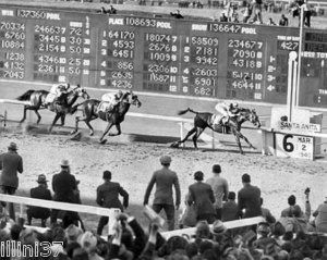 310 best images about SEABISCUIT on Pinterest | Horse racing, Race ...