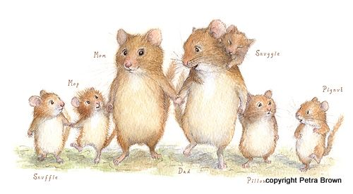 Mouse family - Petra Brown