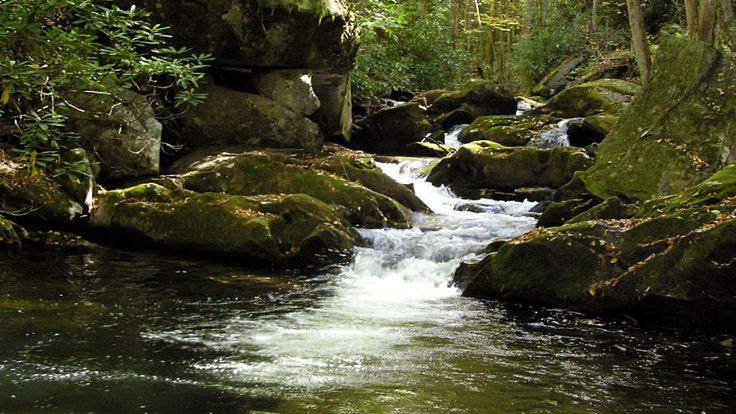 Ken Burns shares secrets of Great Smoky Mountains National Park.  Ken Burns sat down with USA TODAY and shared some secrets of America's national parks.    #kenburns #greatsmokymountains #nationalparks