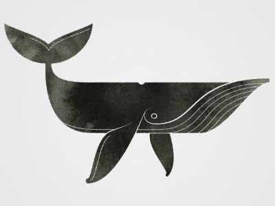 Balena / Joseph Kuefler #illustrazioni #animali #pesci