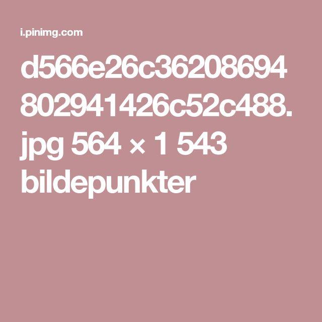 d566e26c36208694802941426c52c488.jpg 564 × 1543 bildepunkter