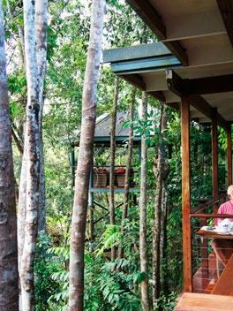 Silky Oaks Lodge. Daintree Rainforest www.greengetawaysaustralia.com.au