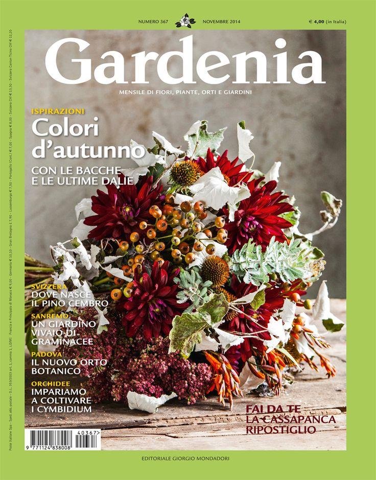 Mada on Gardenia cover