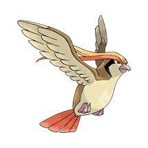 #018 Pidgeot Type: Normal, Flying   #pokemon