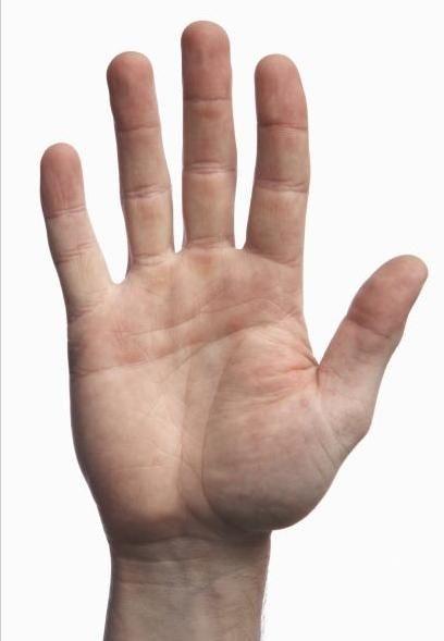 mano - Cerca con Google