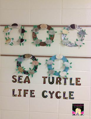 17 best ideas about turtle crafts on pinterest children for Craft stores greenville nc