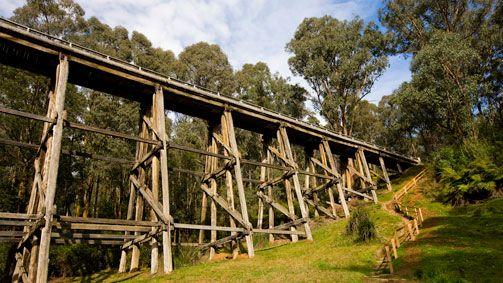 Noojee Trestle Bridge Walk, Gippsland, Victoria, Australia