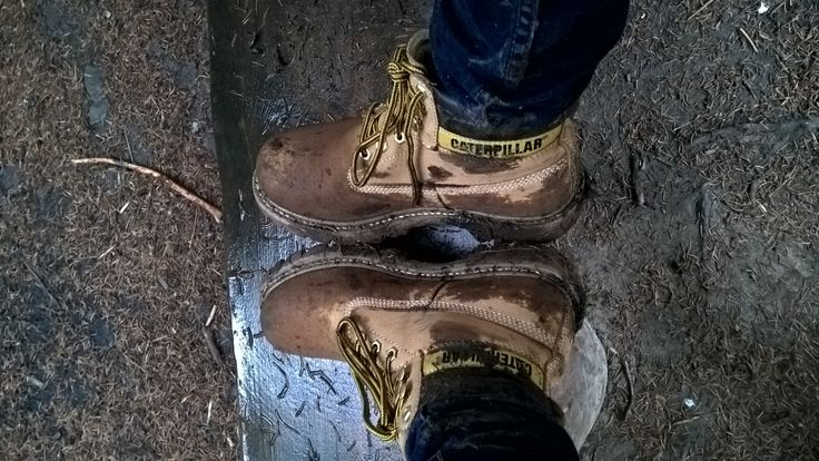 Mud, forest, caterpillar boots