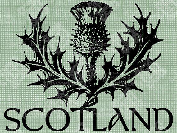 Digital Download Écosse chardon digi par britishislesartworks