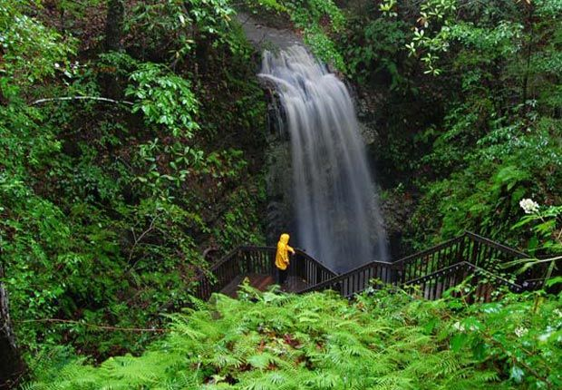 Falling Waters Falls Chipley, Florida At 73 feet, the highest waterfall in Florida may also be the lowest: It drops into a 100-foot sinkhole, then drains into a limestone cavern.