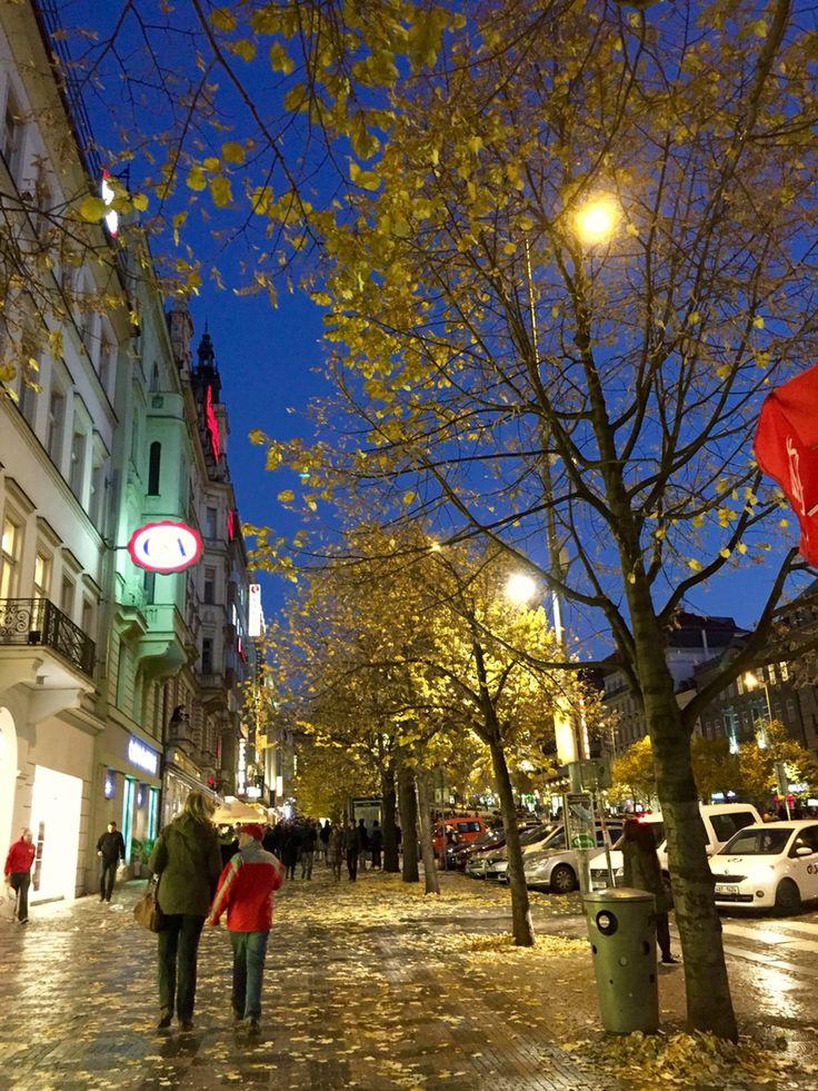 #wencelassquare #praguecitycenter #newtownprague #autumn #night #mordenclassic #travel  #crezh #europe #prague #praha2015 #evanepeace
