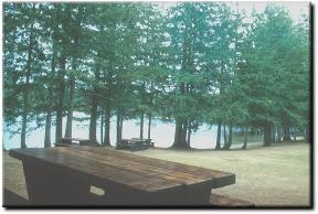 BC Parks - Spider Lake Provincial Park, Qualicum Bay, Vancouver Island, British Columbia