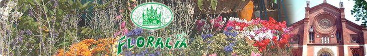 Floralia 2012: il #mercatino di #beneficenza dove donare i vecchi giocattoli --> 24 e 25 marzo #Milano