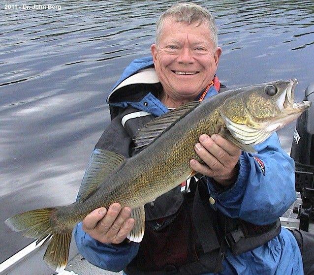 very nice lac seul walleye