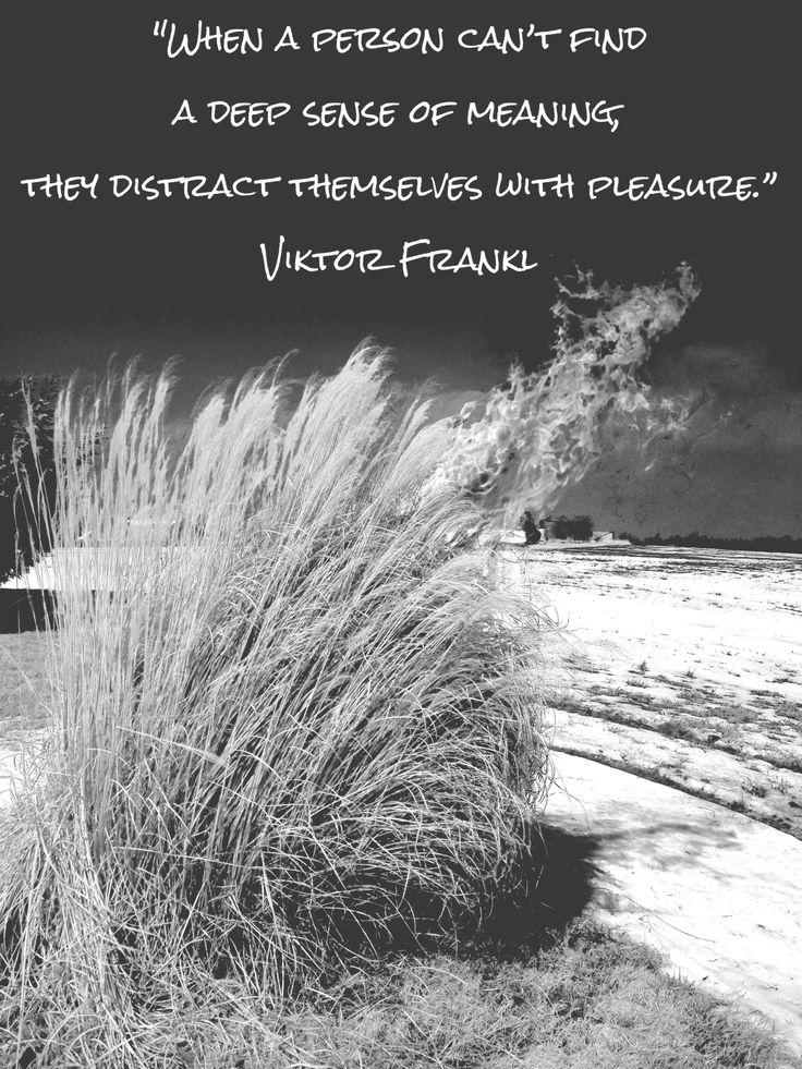 viktor frankl meaning of life pdf