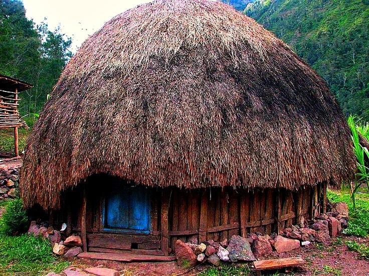 Honai-Papua