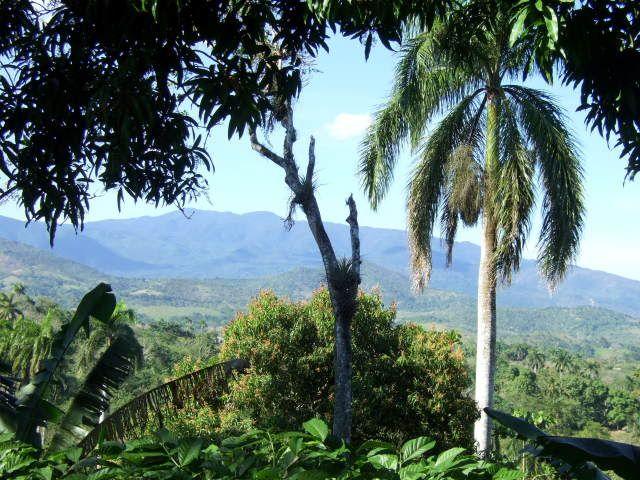 Park w prowincji Holguin