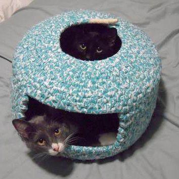 Cama gatos