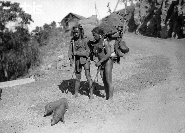 1923 --- Annam, Vietnam: Moi family with two pet pigs. --- Image by © Bettmann/CORBIS