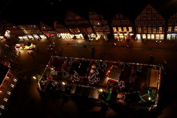 Das Weihnachtswäldchen auf der Stechbahn, von oben.
