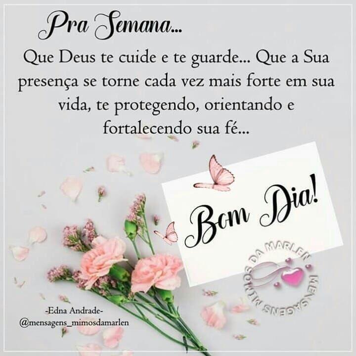 Bomdia Semananova Paz Amor Gratidao Mimosdamarlen