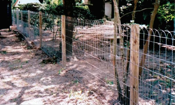 double loop ornamental fencing. Old-fashioned and beautiful. Will keep chickens in or out.