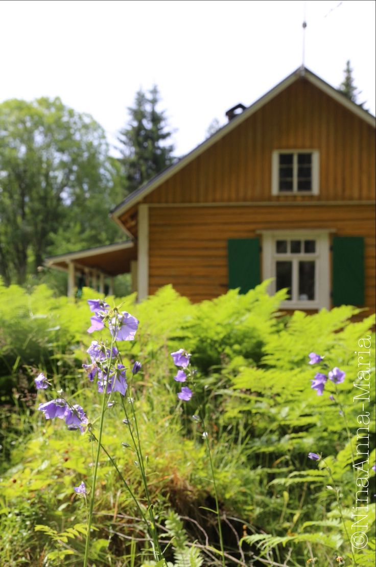 Our dear old summer house