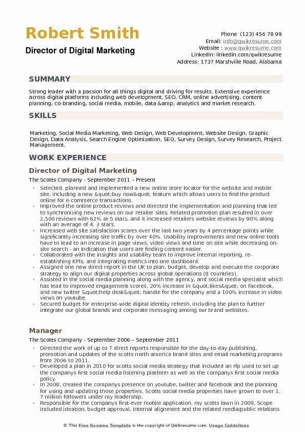 Digital Marketing Resume Sample Awesome Director Of Digital Marketing Resume Samples Marketing Resume Accountant Resume Digital Marketing