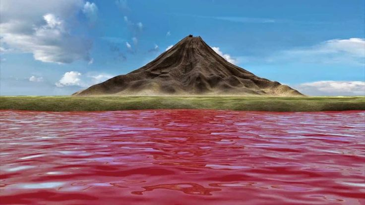 Lake Natron is a salt lake located in northern Tanzania, close to the Kenyan border, in the eastern branch of the East African Rift.