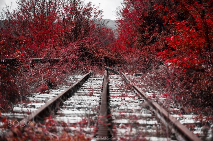 Autumn-Abandoned Station! - Autumn-Abandoned Station! ©2015  All Right Reserved!