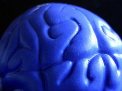 This article discusses the benefits of exercise and how it increases neurotrophic production. I love to learn ways to improve my memory and methods for reaching my maximum level of intelligence.