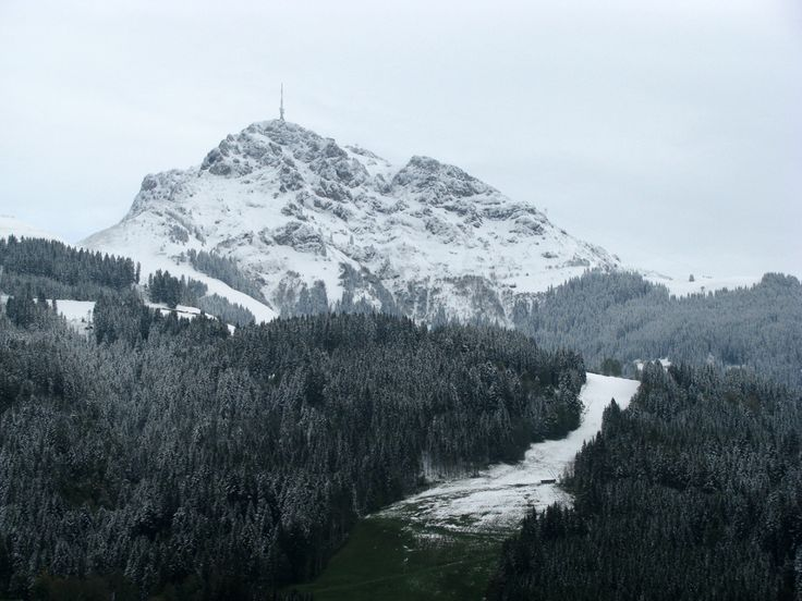 Kitzbüheler Alpen Skiabfahrt Streif ohne Schnee http://ift.tt/1fZSkcL