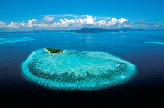barrière de corail, à bornéo,