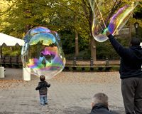 The ten best things to do in Central Park for NYC families
