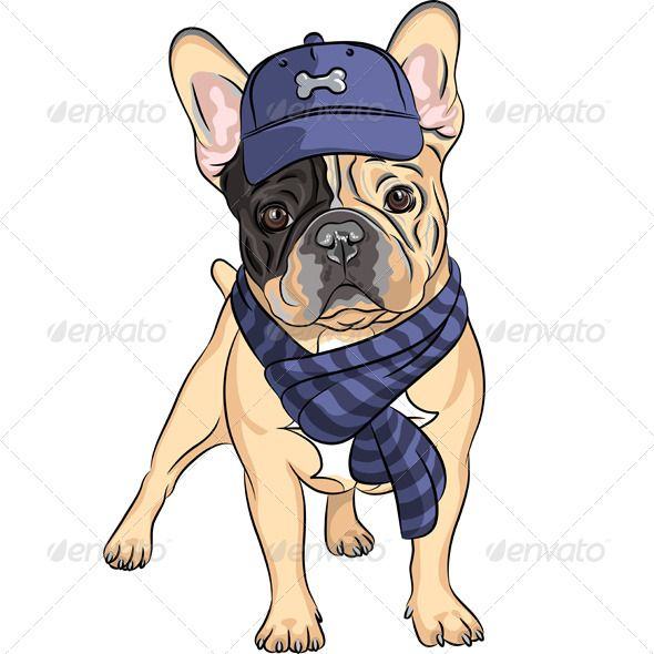 Vector Hipster Dog French Bulldog Breed