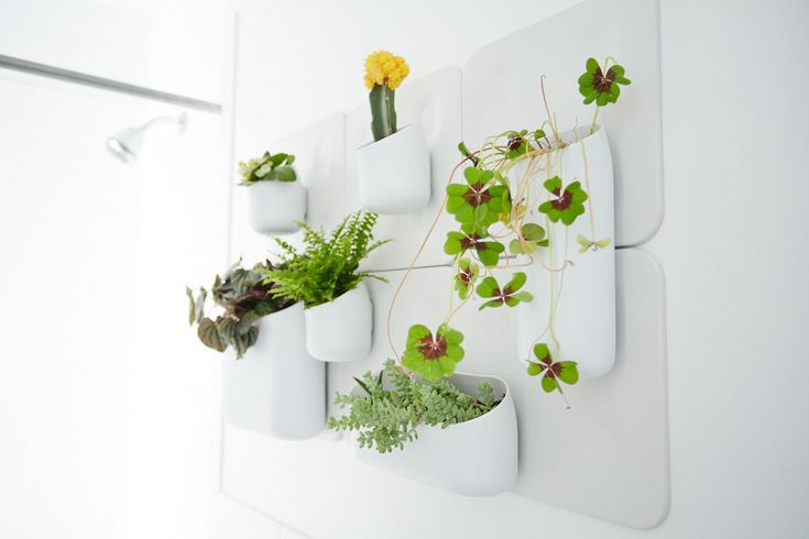 How To Make Your Place Look AWESOME #refinery29  http://www.refinery29.com/69347#slide-12  Try a bathroom garden.  Adding a variety of green plants to this light-filled room brings a touch of nature and freshness. Plus, the steam from the shower is like a self-watering system for not-so-thirsty succulents.