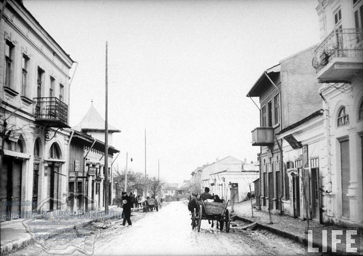 74.Turtucaia.Muddy street in main part of town.