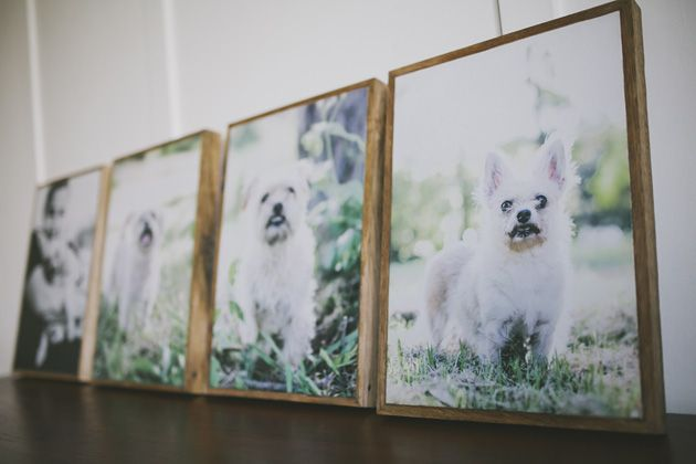 Wall portraits framed with reclaimed wood by Willow & Co. http://willowand.co
