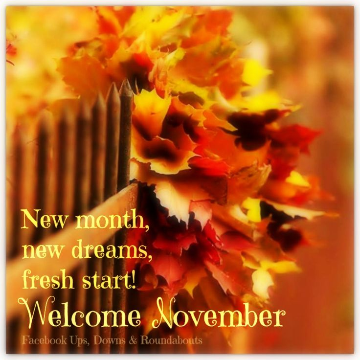 New month, new dreams, fresh start! Welcome November https://www.facebook.com/UpsDownsRoundabouts/photos/p.1318205404880863/1318205404880863/?type=3&theater