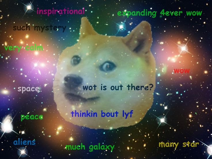 14011 doge in space - photo #26